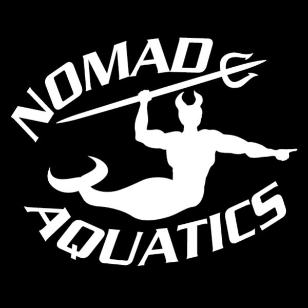 nomad-logo-lt
